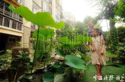 家门口有最美风景!宁波一小区脏乱差绿地变身共享花园