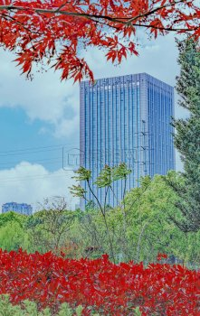 宁波世纪大厦写字楼华东城61平方办公室出
