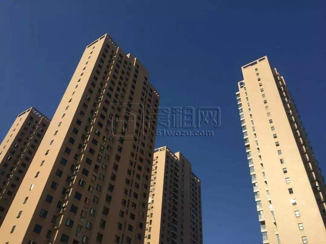 无房的成年单身人士能在宁波优先购房吗?