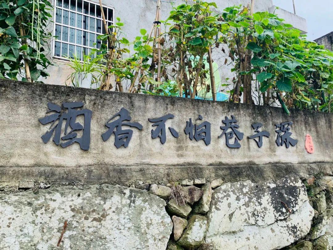 240年前的豪宅长啥样?这个宁波小村告诉你