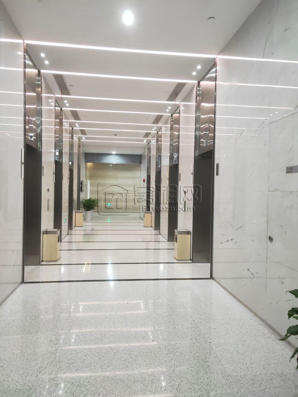 东部新城保税区国际贸易中心266平东北朝向3隔间