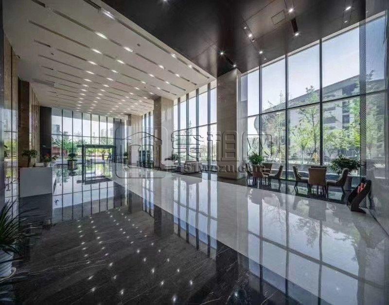 会展中心9号管对面宁兴国贸大厦830平米大面积出
